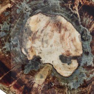 Подставка Фоссил коричневый